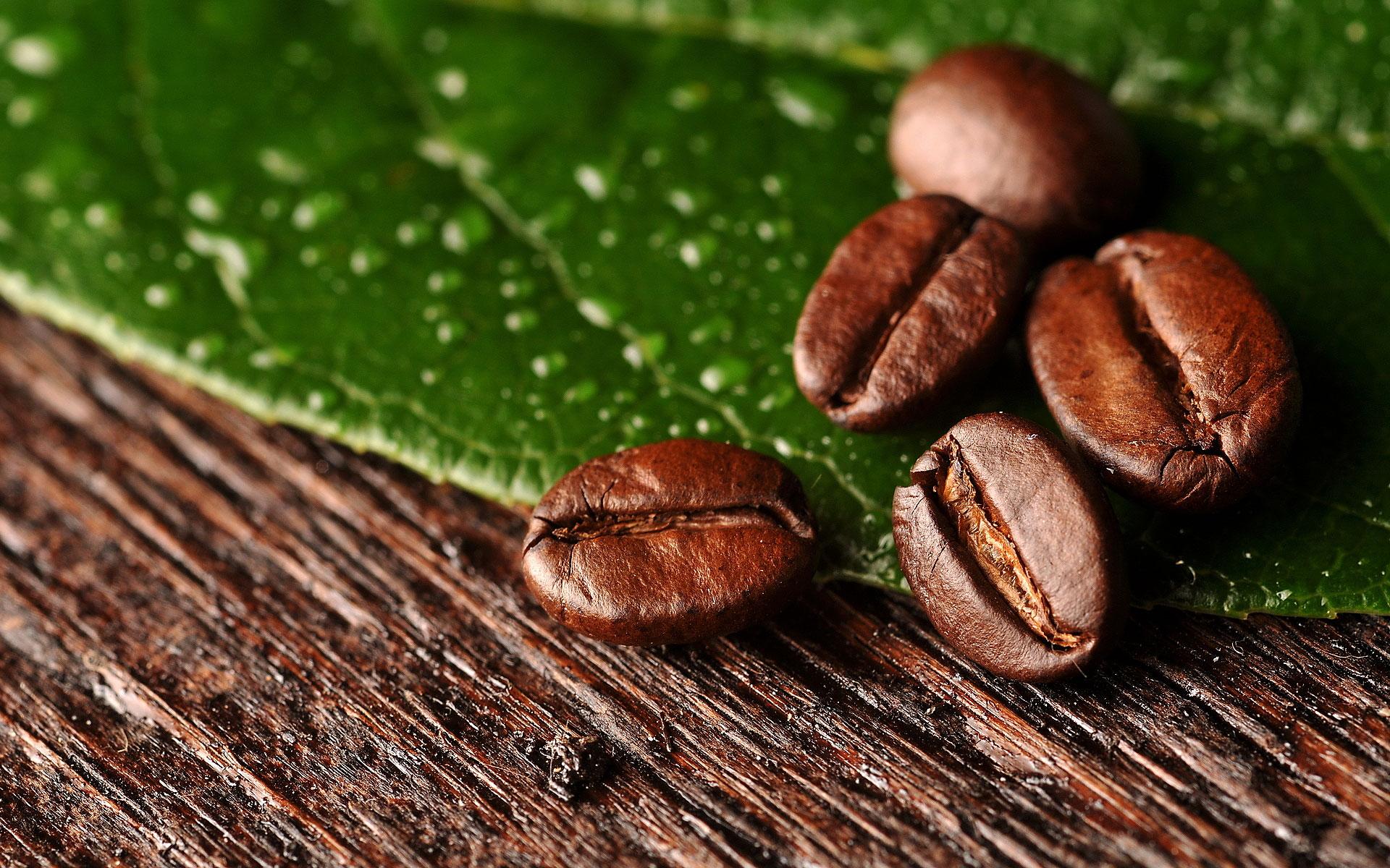 Buy Senseo Coffee Pods Online Coffee Mania Ireland